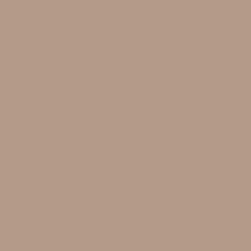 841 Buckskin Gutter Color
